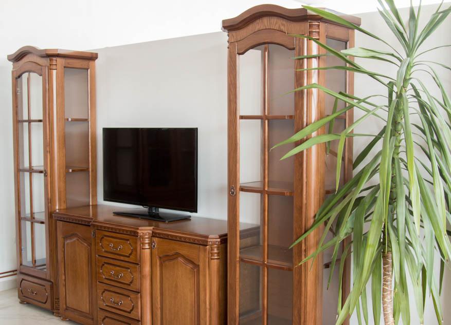 vitrina-tv-plazma-1